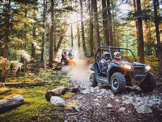 RZR Cougar Mountain adventure tour, Whistler