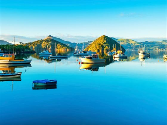 Scenic view of Dunedin