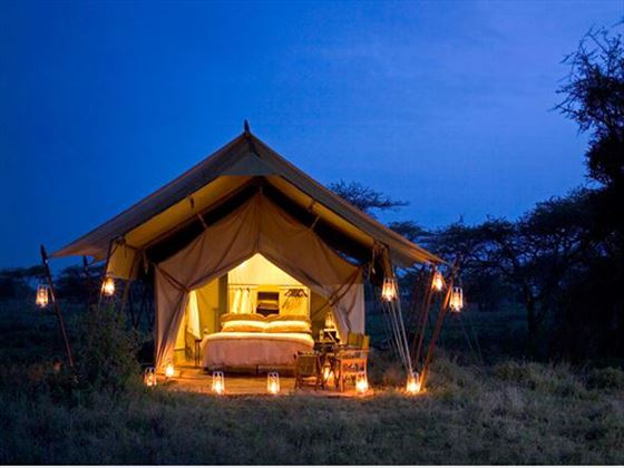 Serengeti Under Canvas bedroom