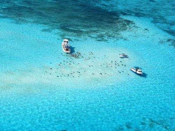 Snorkelling amongst the stingrays