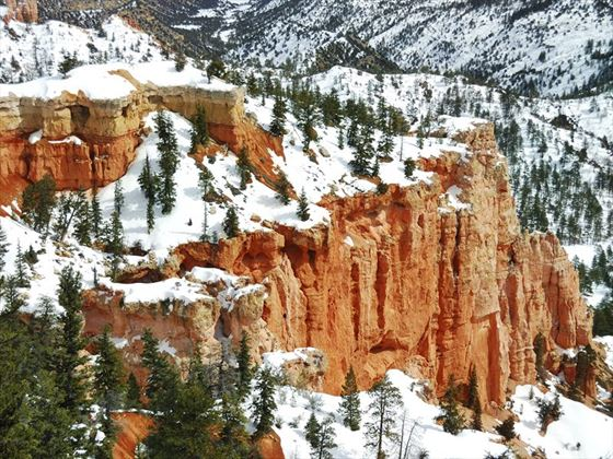 Snow covered Bryce Canyon National Park