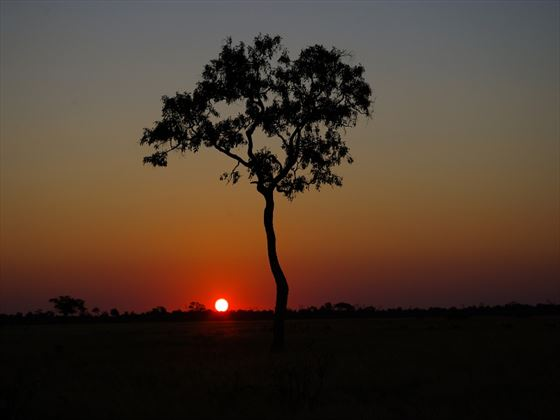 Sunset at the Savute Safari Lodge