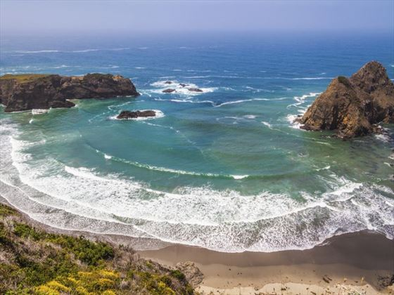 The Bay, Sonoma Coast