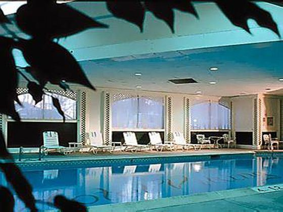 The Hotel Viking Swimming Pool