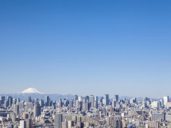 Tokyo skyline and Mount Fuji
