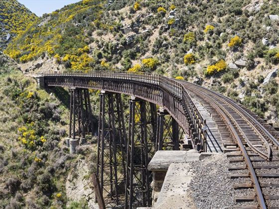 Taieri Gorge railway bridge