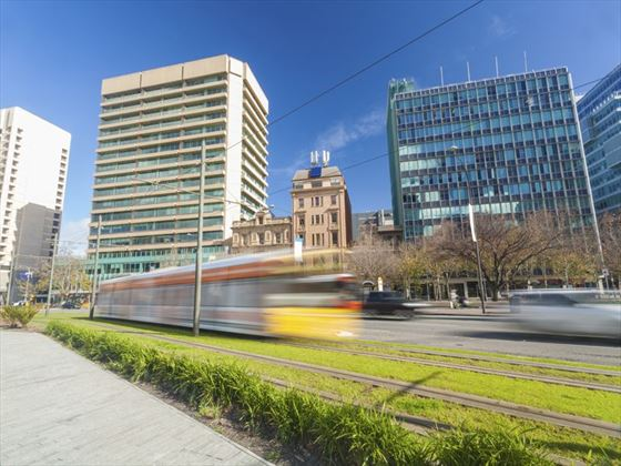 Tram in Adelaide