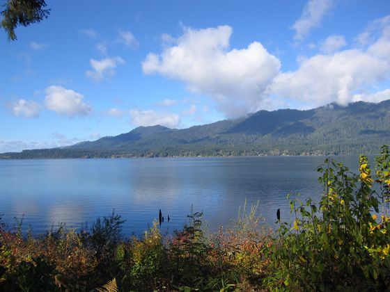 Lake Quinault, Olympic National Forest