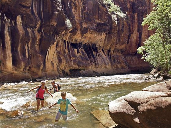 Wading through the Zion narrows