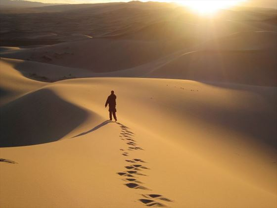 Walking in the Gobi Desert