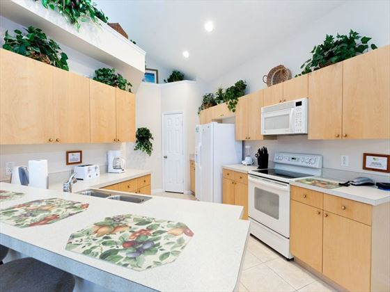 Windsor Palms Typical Kitchen
