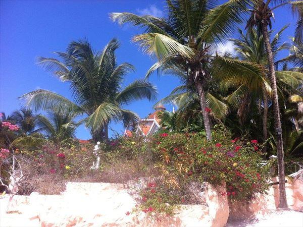 coco reef exterior
