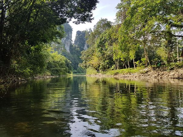khao sok tour rainforest view