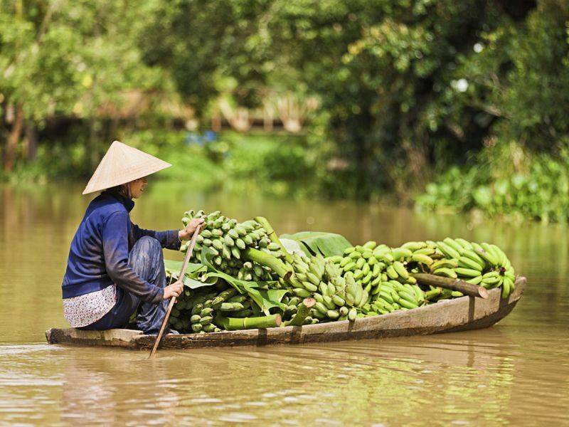 a vietnamese woman rowing boat in the mekong river delta