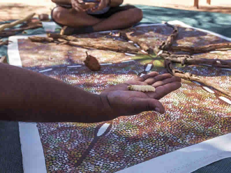 aboriginal culture witchet grub dot painting