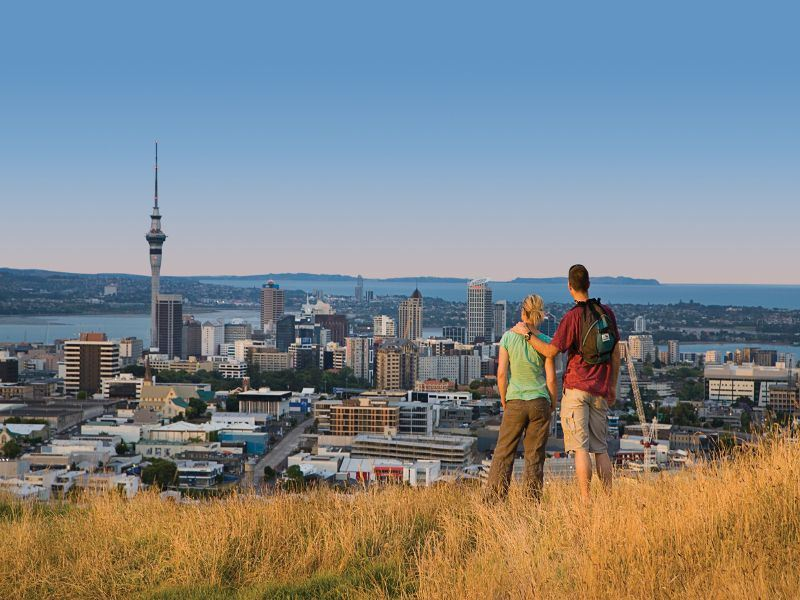 Take guided tours of Auckland and the surrounding areas