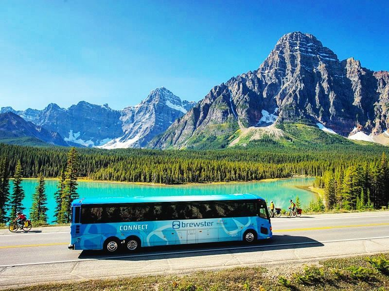 Brewster coach tour along the Icefields Parkway