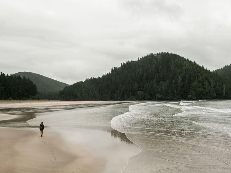 cape scott provincial park vancouver island