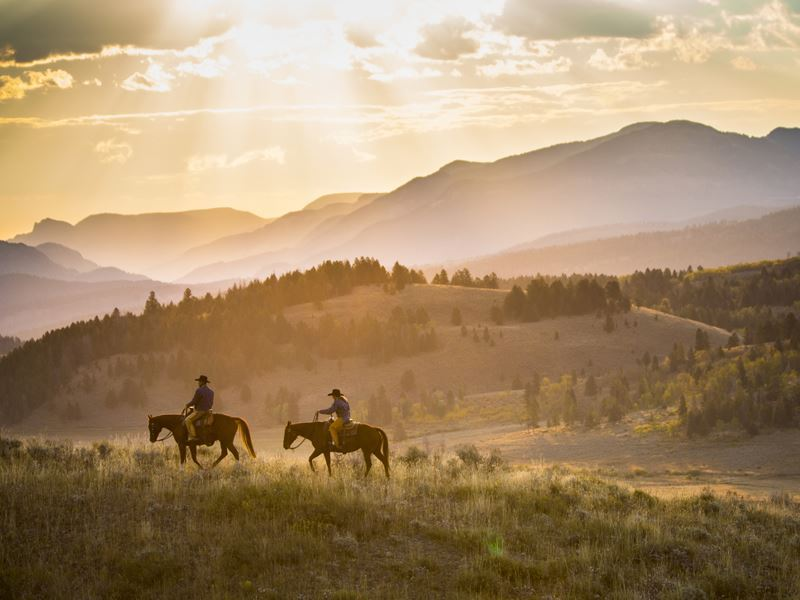 cowboys horse riding wyoming andy barden