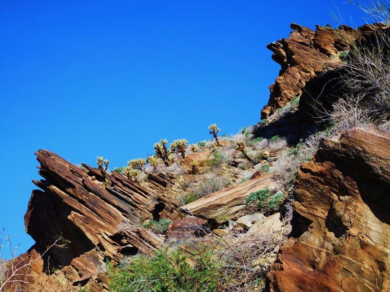 desert adventures indian canyons jeep tour