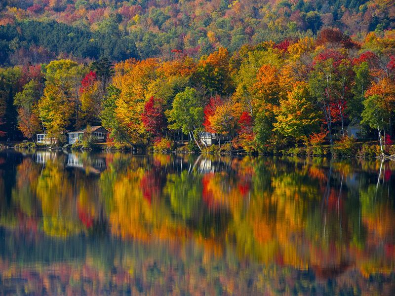 fall colours of elmore lake vermont