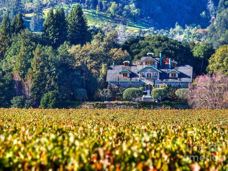 far niente wine estate oakville