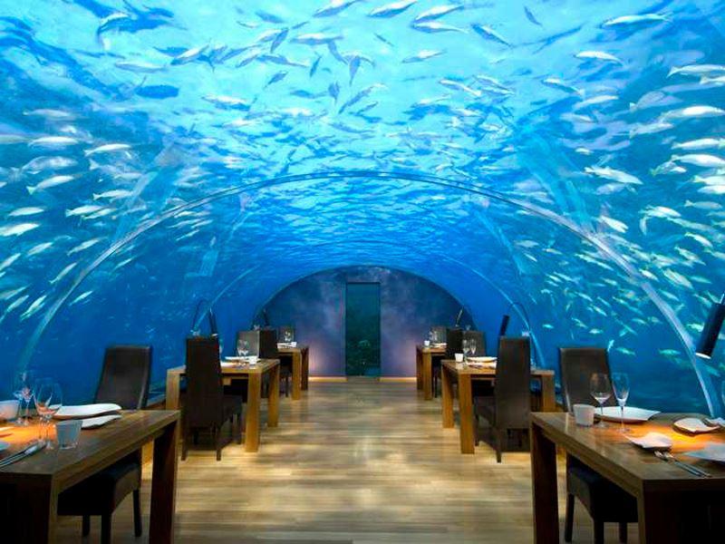 ithaa underwater restaurant at conrad maldives rangali island