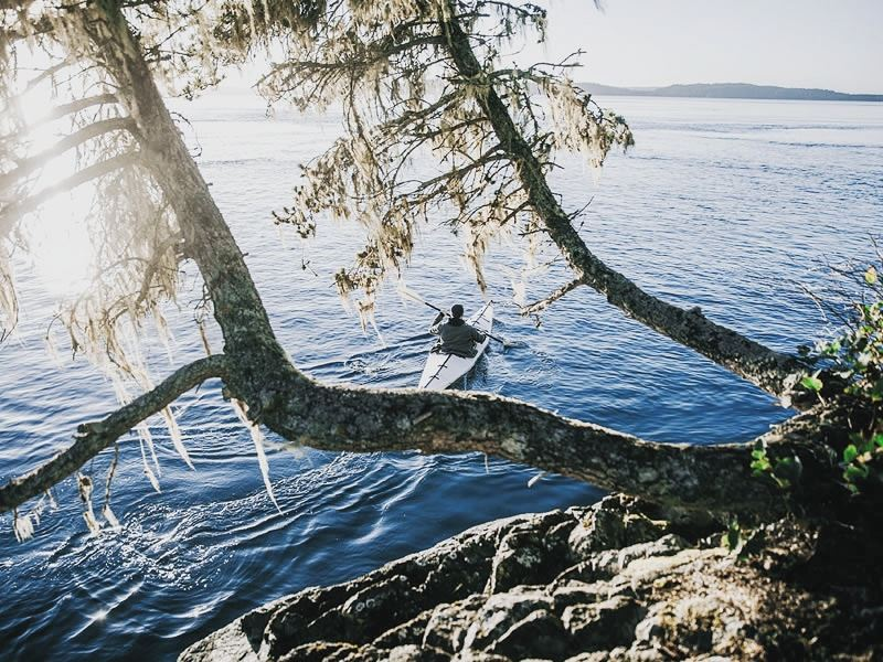 kayaking in telegraph cove vancouver island