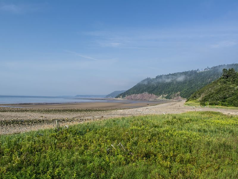 long beach on the fundy trail