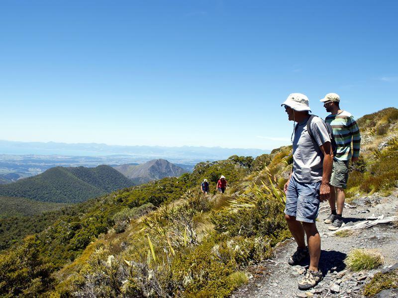 looking out across kahurangi national park