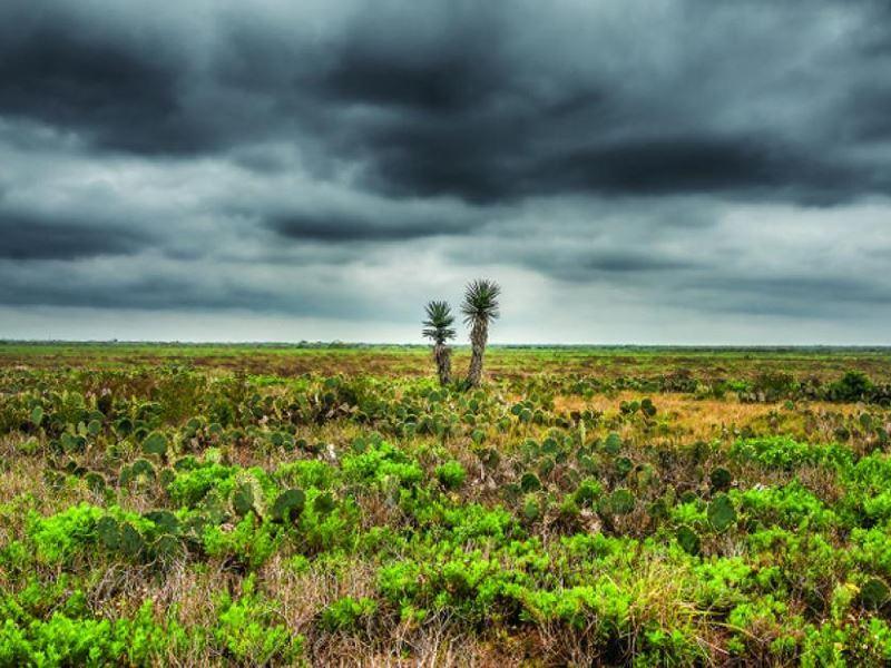 palmito ranch battlefield texas sanchez