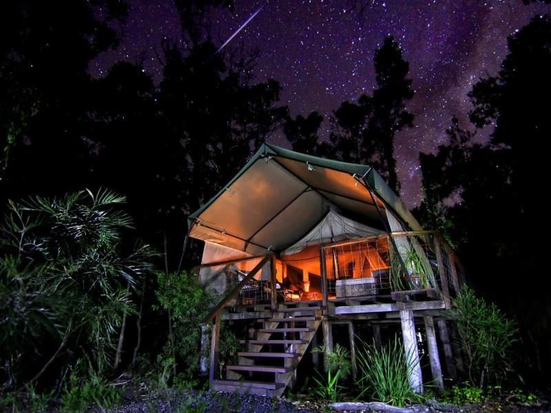 paperbark camp safari tent under the stars