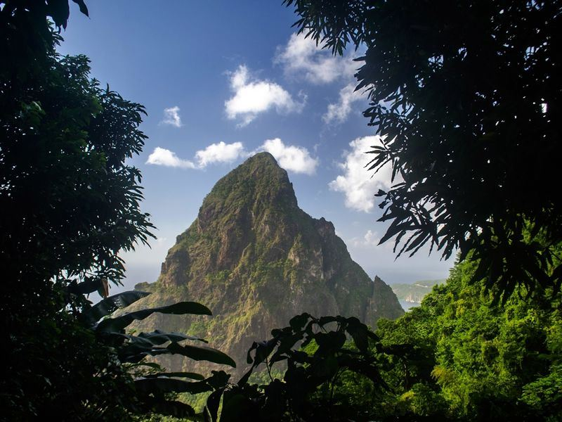 petit piton captured through the trees
