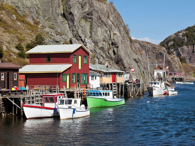 quidi vidi gut avalon