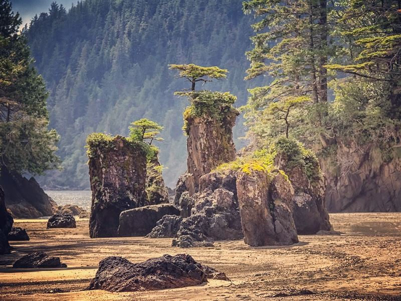 san josef sea stacks at cape scott provincial park