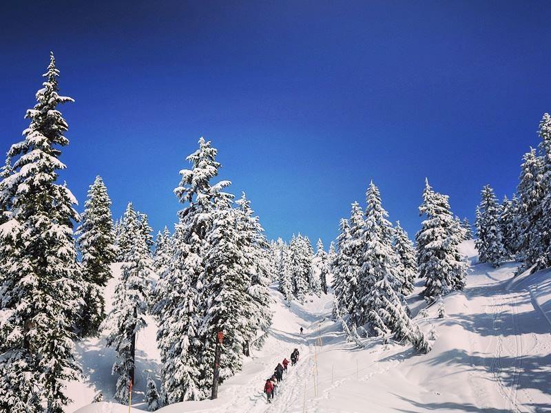 snow mount seymour north vancouver