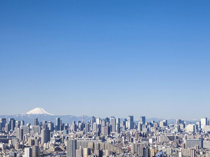 tokyo skyline mount fuji