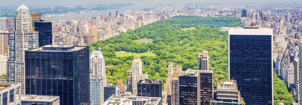 Aerial view of Central Park, New York